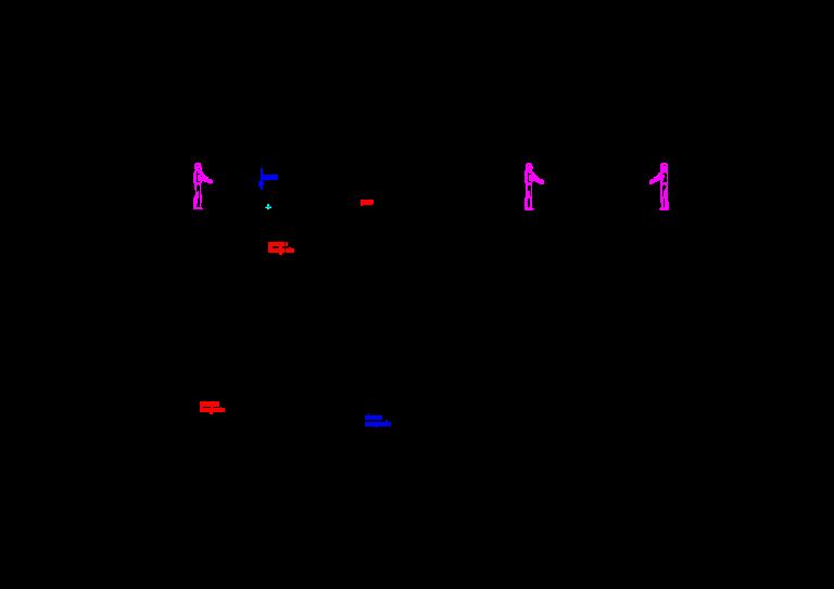 Linia do produkcji marynat grzybowych